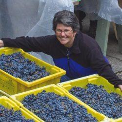 Washington Home Winemaking Moose Canyon Winery
